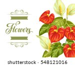 greeting card with flowers... | Shutterstock .eps vector #548121016