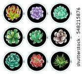 set of gradient colored... | Shutterstock .eps vector #548215876