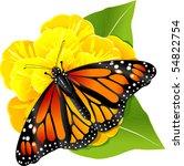 Monarch Butterflies On The...