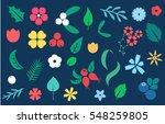 vector set of flat flowers ... | Shutterstock .eps vector #548259805