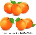 group of fresh apricots | Shutterstock .eps vector #548260066