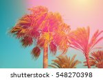 vintage palm trees against sky... | Shutterstock . vector #548270398