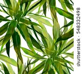 Imprints Palm Leaves. Hand...