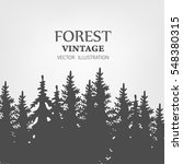coniferous forest silhouette... | Shutterstock .eps vector #548380315