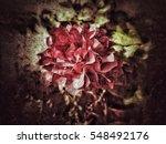 grunge flower background texture | Shutterstock . vector #548492176