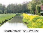 Stream With Yellow Rapeseed...