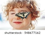 Butterfly Swallowtail And Curl...