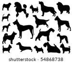 dog breed | Shutterstock .eps vector #54868738