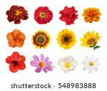 Set Bright Colored Spring Summer - Fine Art prints