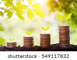 growing plant on row of coin... | Shutterstock . vector #549117832