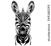 Stock vector good zebra smiling black and white face sketch vector 549180295