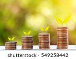 growing plant on row of coin... | Shutterstock . vector #549258442