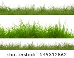 green grass isolation on the... | Shutterstock . vector #549312862