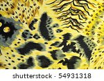 tiger fabric | Shutterstock . vector #54931318