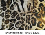 tiger fabric 2 | Shutterstock . vector #54931321