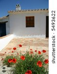 Poppies In An Andalusian Cottage