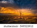 lone tree at sunset pyramid... | Shutterstock . vector #549523912