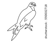 arabian falcon icon. outline... | Shutterstock . vector #550032718