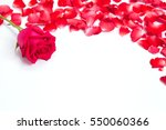 Stock photo red roses petals on white background for layout valentine concept 550060366