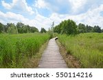 wood path in nature park het... | Shutterstock . vector #550114216