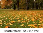 Autumn Leaves On The Lawn Of...