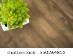 green cactus on wood table | Shutterstock . vector #550264852