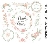 peach green wedding floral... | Shutterstock .eps vector #550287748