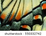 macro close up of a swallowtail ... | Shutterstock . vector #550332742