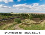 Roseberry Topping Seen From...