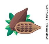 cocoa beans and leaves vector... | Shutterstock .eps vector #550422598