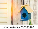 Bird House In Morning