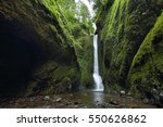 Lower Falls In Oneonta Gorge....