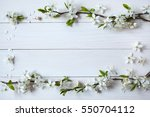 background with flowering ... | Shutterstock . vector #550704112