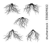 set of black roots. vector... | Shutterstock .eps vector #550809832