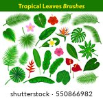 Tropical Leaves Collection Wit...