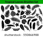 tropical leaves silhouette set... | Shutterstock .eps vector #550866988