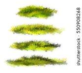 grass. illustration. | Shutterstock . vector #550908268