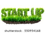 start up business 3d... | Shutterstock . vector #550954168