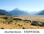 Aoraki Mount Cook Viewed And...