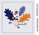 acorns and oak leaves. hand...   Shutterstock .eps vector #551031112