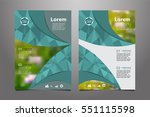 green vector annual report... | Shutterstock .eps vector #551115598