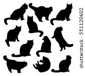 Stock vector set of vector silhouettes of images of cute cats in various poses 551120602