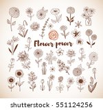 set of doodle sketch flowers in ... | Shutterstock .eps vector #551124256