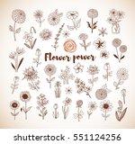 set of doodle sketch flowers in ... | Shutterstock .eps vector #551124256