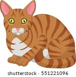 cartoon funny cat isolated on... | Shutterstock . vector #551221096