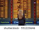 young elegant business woman... | Shutterstock . vector #551223646
