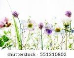 spring flowers | Shutterstock . vector #551310802