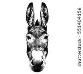 Donkey Head Black And White...