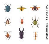 Set Of Insects Flat Style...