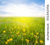 beautiful rural field with a... | Shutterstock . vector #551542456